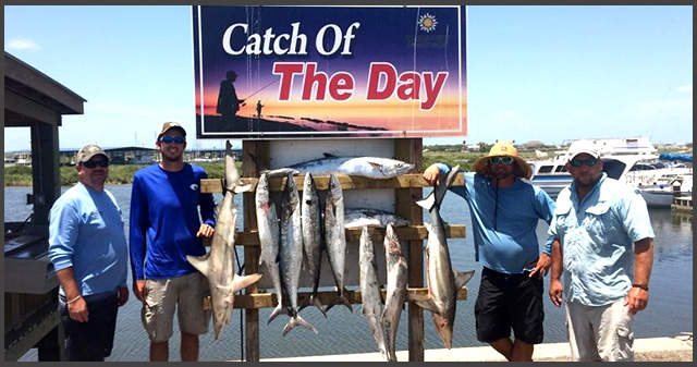 Saltitude outfitters rockport texas fishing guide for Rockport fishing guides